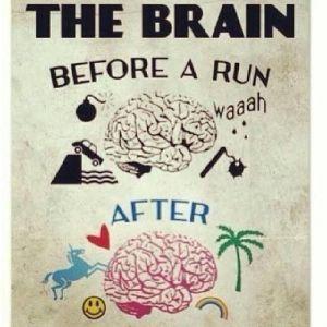 brainrun