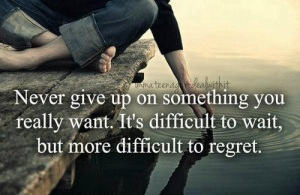 Never_give_up_quotes14