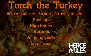 torch_the_turkey