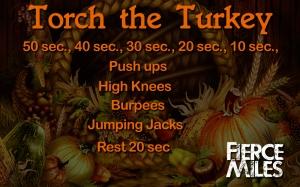 torch_the_turkey